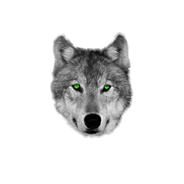 Torba Hypnotic Wolf - ROOT
