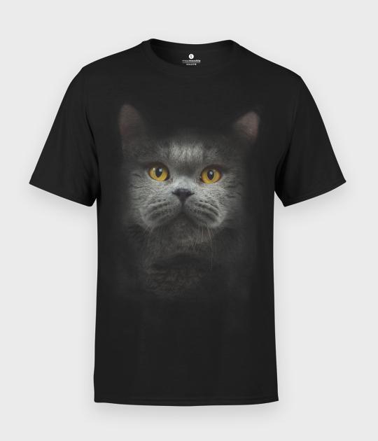 Koszulka męska Brytyjski kot 3D